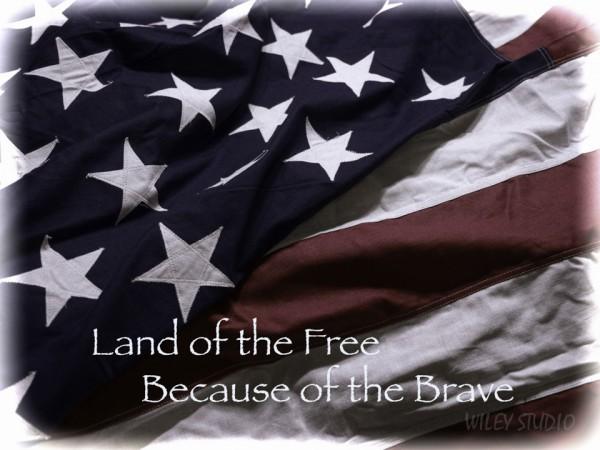Land of Free