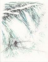 Fine Line Illustration