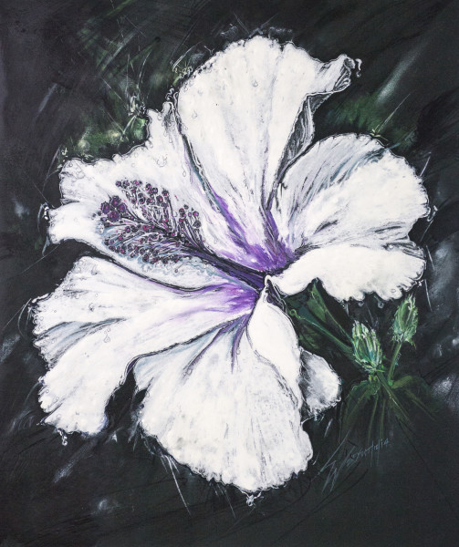 Hibiscus - Mixed Media