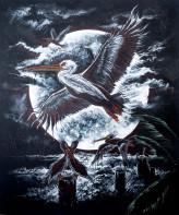 Pelican Moon Illustration
