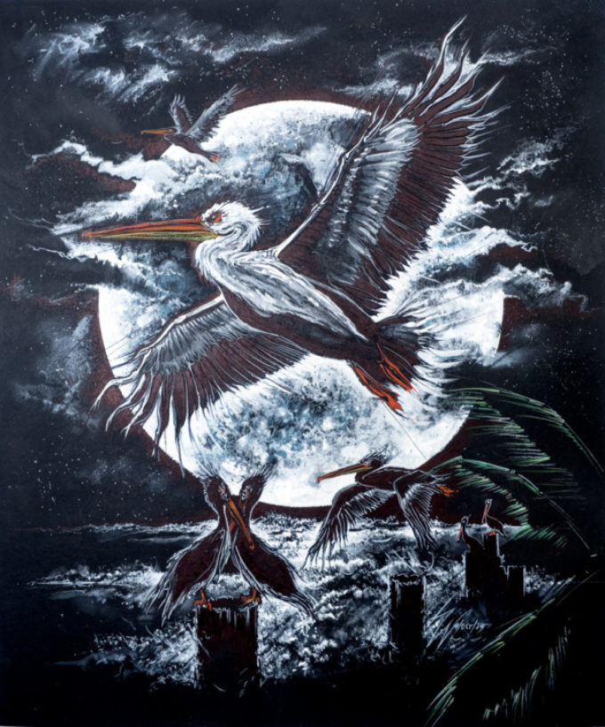 Pelican Moon Illustration